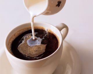 Dieta coffe s molokom