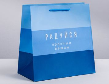 "Пакет ""Синий"" 30 × 30 × 12 см"